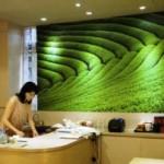 【閉店】「櫻花養生伴手禮」は、お洒落空間でゆっくり台湾土産を選べます。