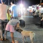 花蓮海辺のほんわかローカルムードがいい~「南濱夜市」