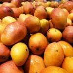 台湾でマンゴ・ライチ・パイナップル・ドラゴンフルーツを日本へ配送手配!